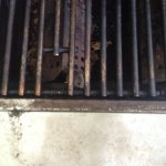 mices in grill aug 31 2016 image 2.JPG